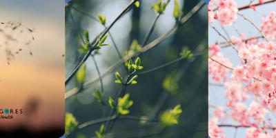 5 tips om het voorjaar goed te beleven